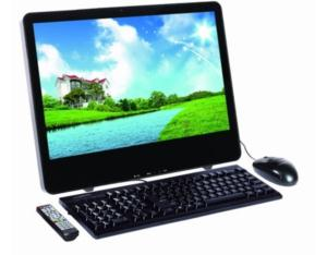 LCD All in One PC (D195)