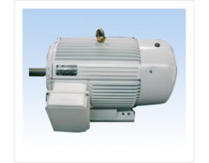 YD Series Variable Pole Multi-Seed Three-Phase Asynchronous Motor