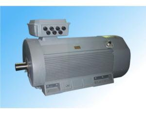 Y2 low voltage high power motor