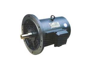 Series hbvf motors