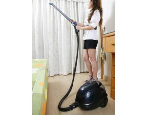 Steam Vacuum Cleaner With Iron