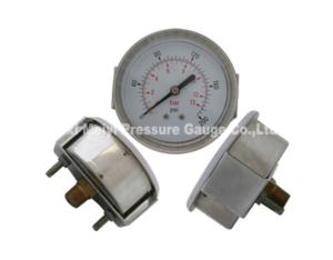 Plastic Case Pressure Gauge with Screw in Lens (MY-PLS-001)