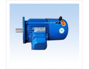 YEJ Series Electromagnetic Brakin Three-Phase Asynchronous Motor