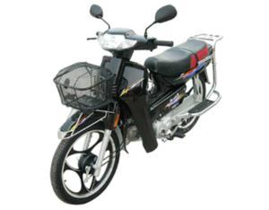 Motorcycle (SY100-12/dayang)