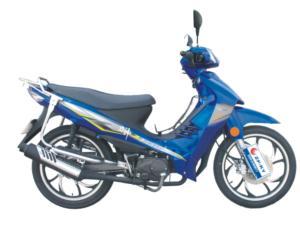 CUB Bike (SKC110-8)