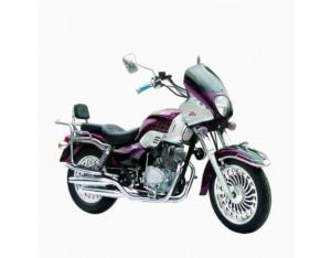 Motorcycles with New Design Sticker (JD150-21)