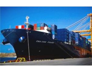 Ocean Freight / Sea Shipping From Shenzhen to Japan