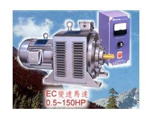 Special purpose motor
