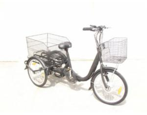Electric Tricycle (XFT-004)