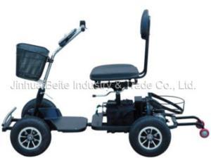 Golf Cart (BTG-01)