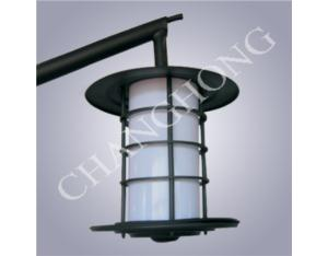 Induction Lamp Courtyard Light CHTY-001