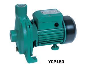 YCP 离心泵