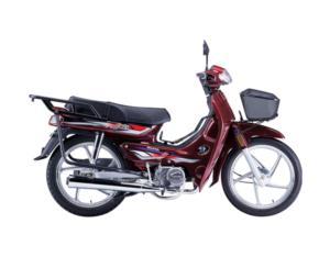 SY110-motorcycle