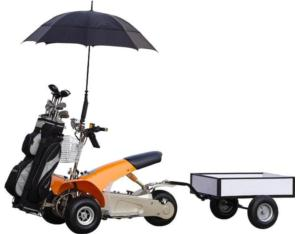 Utility Golf Cart (SX-E0906-6A)