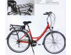 Electric Bicycle (Catherine)
