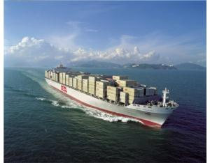 Shipping Agent / Sea Freight / Freight Agent