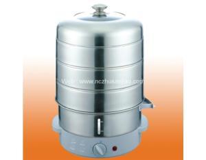 Electrical Steamer (CCFX-188)