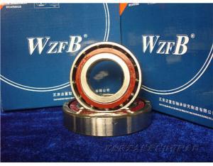 Angular Contact Ball Bearings for Ball Screws (7603020TVP)