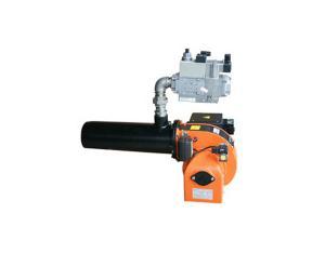 Gas Burner (DLR34T)