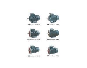 Y2 Series Three-Phase Asynchronous Motors