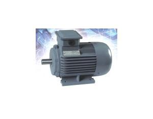 Three Phase Electric Motor