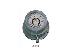 Explosion Proof Electric Contact Pressure Gauge