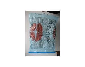 Hanging Vacuum Storage Bag