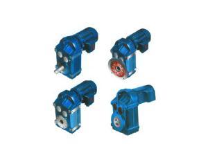 Cylindrical Gear Motor (P Series)