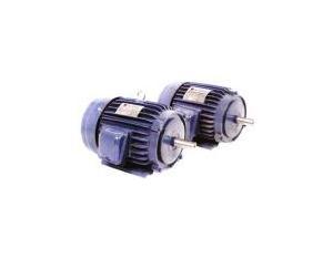 Yt Series Three-Phase Asynchronous Motor