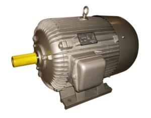 (CE)JO2 Three Phase Electric Motor (JO271-4, 30HP)