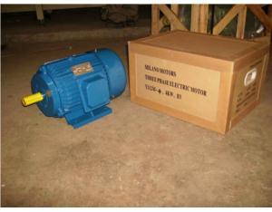 (CE) Y Series Three Phase Electric Motor (Y802-4)