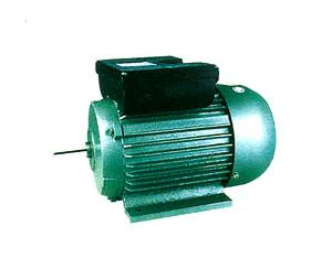 YL Series Single-Phase Induction Motor