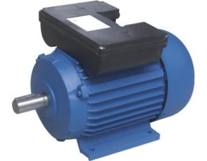 YL Series Single Phase Two Value Capacitor Motors