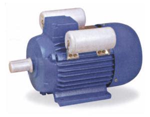 Single Phase Induction Motor (YL)