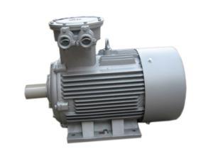 Explosion Proof Motor, Flameproof Motor, Asynchronous Motor