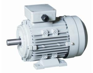 MS Series Three-Phase Electric Motor
