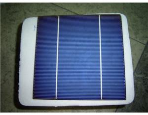 Polycrystalline Solar Cell (156)