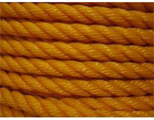 Paper Carrier Ropes (PCR)