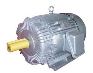 YO2 Three-Phase Induction Motor (YAEEF 160L-4)