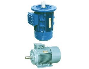 Three-Phase AC Motor (Y2)