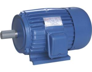 Y Series Three-Phase Electric Motor