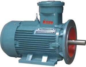 Explosion Proof AC Motor (YB2-280M-2)
