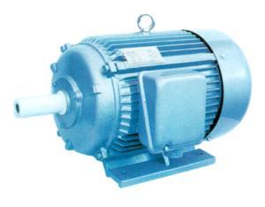 Y Series Motor