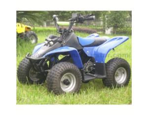 Electric ATV SX-E 350ATV -B