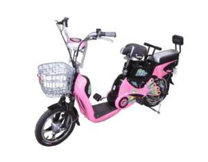 Electric Bicycles /E30