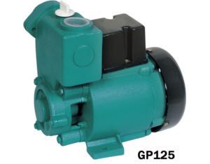 GS GP 自吸式清水泵