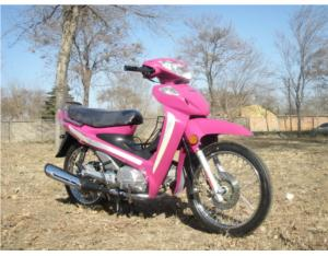 110cc Cub Motorcycle FUTURE 110