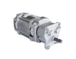 AC Gear Motor YN80-40/75JB
