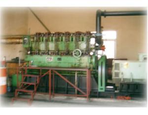 Biomass gas generator set