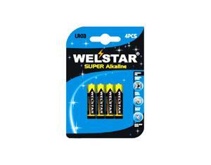Battery WSL721-4B